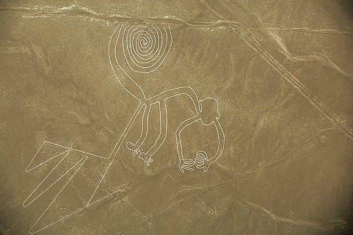 De aap, een van de Nazca lijnen