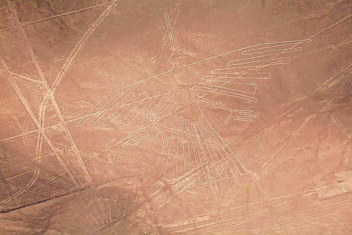 De condor, een van de Nazca lijnen