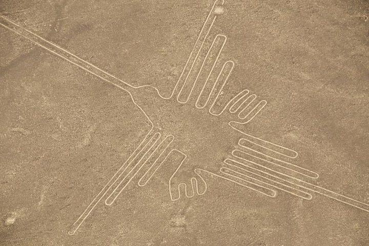 De kolibrie, een van de Nazca lijnen