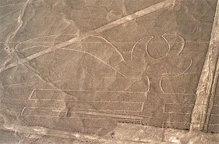 De papegaai, een van de Nazca lijnen